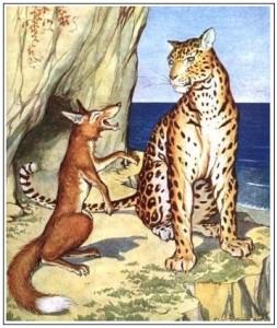 A raposa e a onsa 1